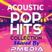 V.A. - Acoustic Pop Hits Collection / 2018
