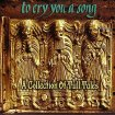 V.A. - To Cry You A Song: A Collection Of Tull Tales / 1996