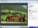 Photo Montage Guide 1.6.3 RePack / Windows