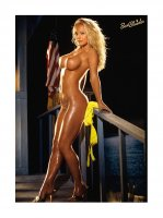 """Playboy Special Collector's Edition """"Best blondes"""" 2015 (2015 / США) PDF"""