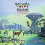 Yes - Topographic Drama - Live Across America / 2017 / FLAC lossless